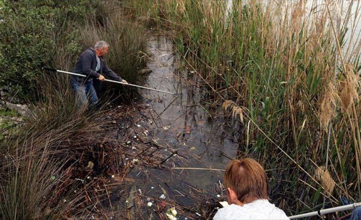 Yerleşik yabancılar 5 yıldır Dalyan Kanalı'nı temizliyor