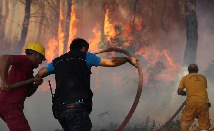İzmir'deki orman yangınına ilişkin 1 kişi gözaltında