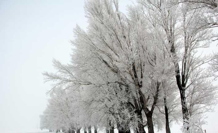 Dikkat kar geliyor !